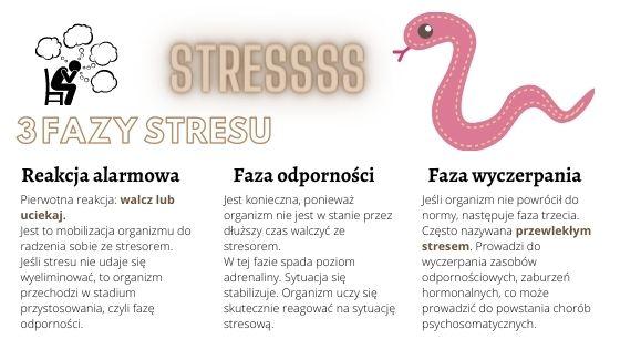 3 fazy stresu: reakcja alarmowa, faza odporności i faza wyczerpania. Dieta na stres