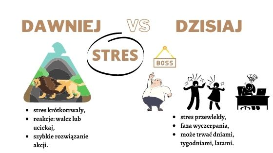 Stres dawniej kontra dziś! Stres przewlekły a stres krótkotrwały. Dieta na stres