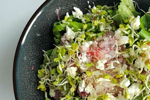 Sałatka z kiełkami rzodkiewki i serem feta